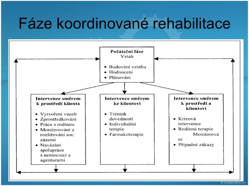 Fáze koordinované rehabilitace