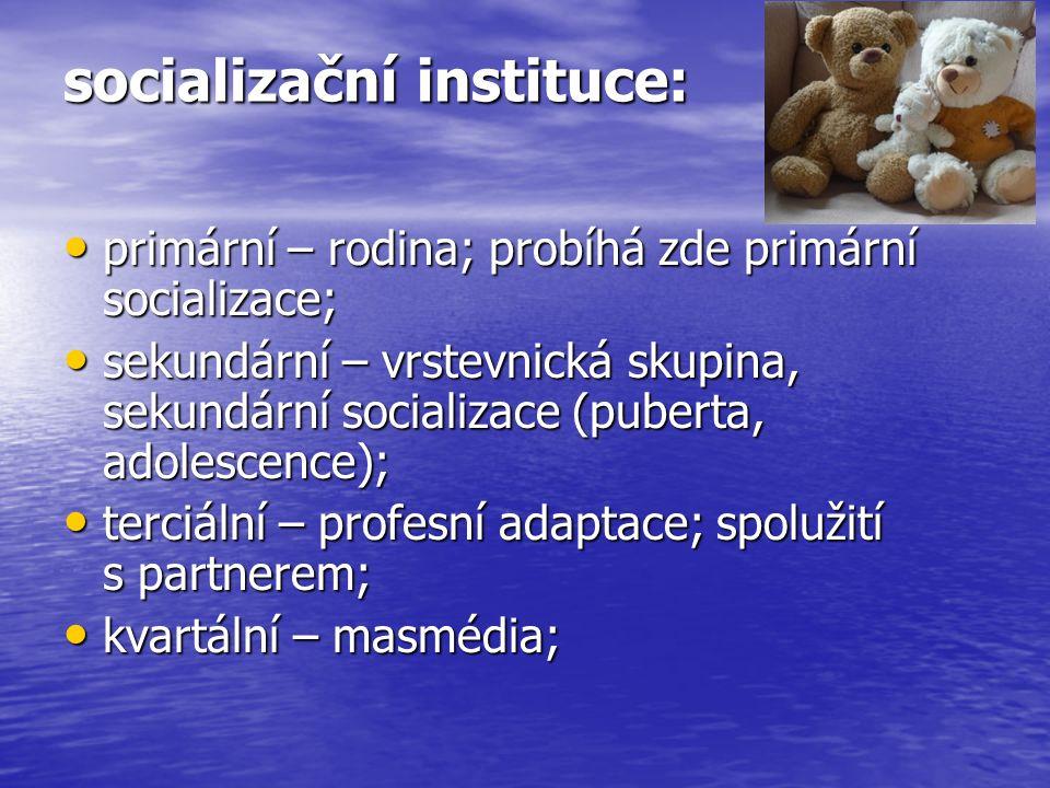 socializační instituce: primární – rodina; probíhá zde primární socializace; primární – rodina; probíhá zde primární socializace; sekundární – vrstevnická skupina, sekundární socializace (puberta, adolescence); sekundární – vrstevnická skupina, sekundární socializace (puberta, adolescence); terciální – profesní adaptace; spolužití s partnerem; terciální – profesní adaptace; spolužití s partnerem; kvartální – masmédia; kvartální – masmédia;