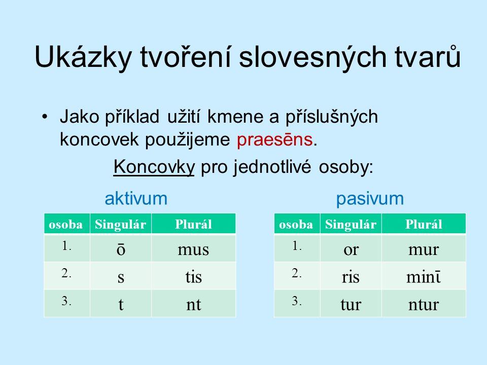 Ukázky tvoření slovesných tvarů Jako příklad užití kmene a příslušných koncovek použijeme praesēns.