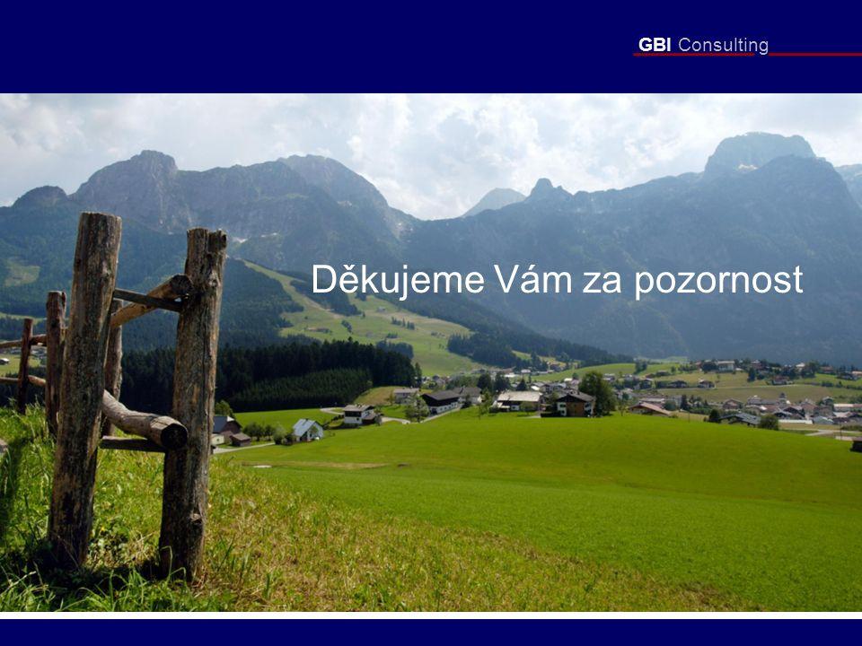 GBI Consulting Děkujeme Vám za pozornost