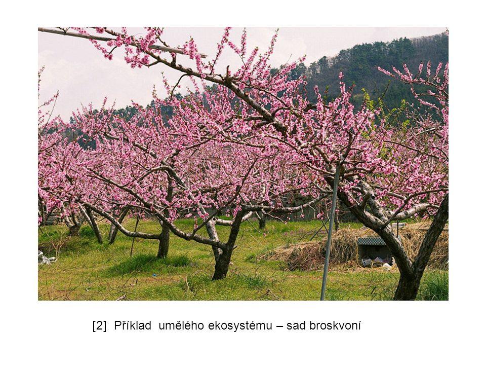  2  Příklad umělého ekosystému – sad broskvoní