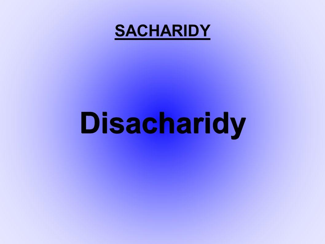 SACHARIDY Disacharidy