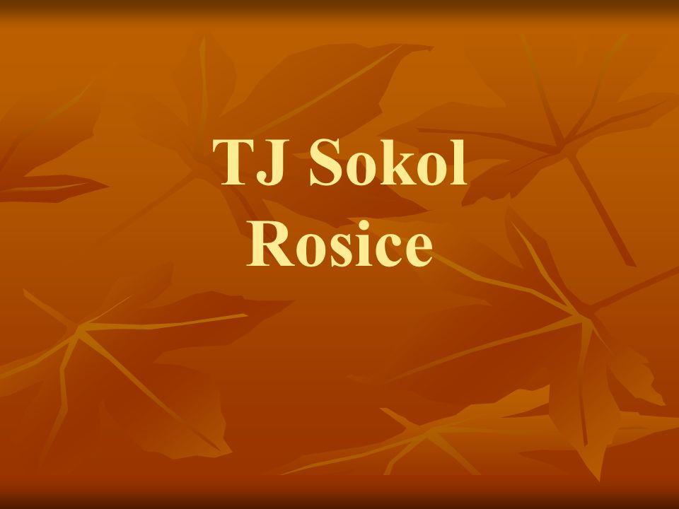 TJ Sokol Rosice