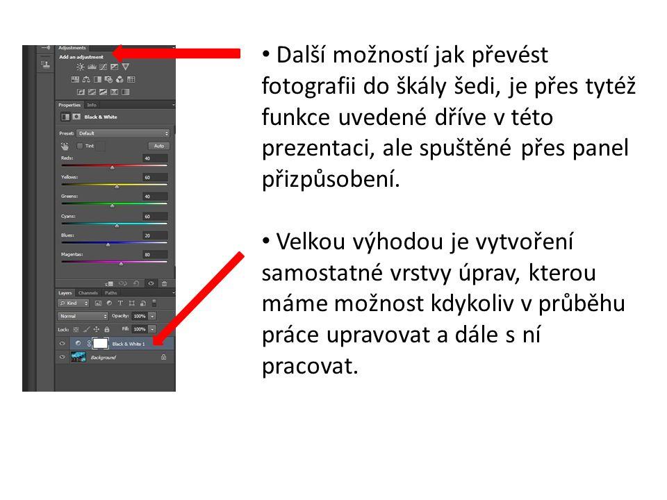 Další možností jak převést fotografii do škály šedi, je přes tytéž funkce uvedené dříve v této prezentaci, ale spuštěné přes panel přizpůsobení.