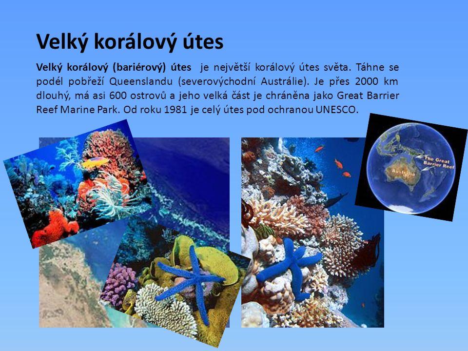 Velký korálový útes Velký korálový (bariérový) útes je největší korálový útes světa. Táhne se podél pobřeží Queenslandu (severovýchodní Austrálie). Je
