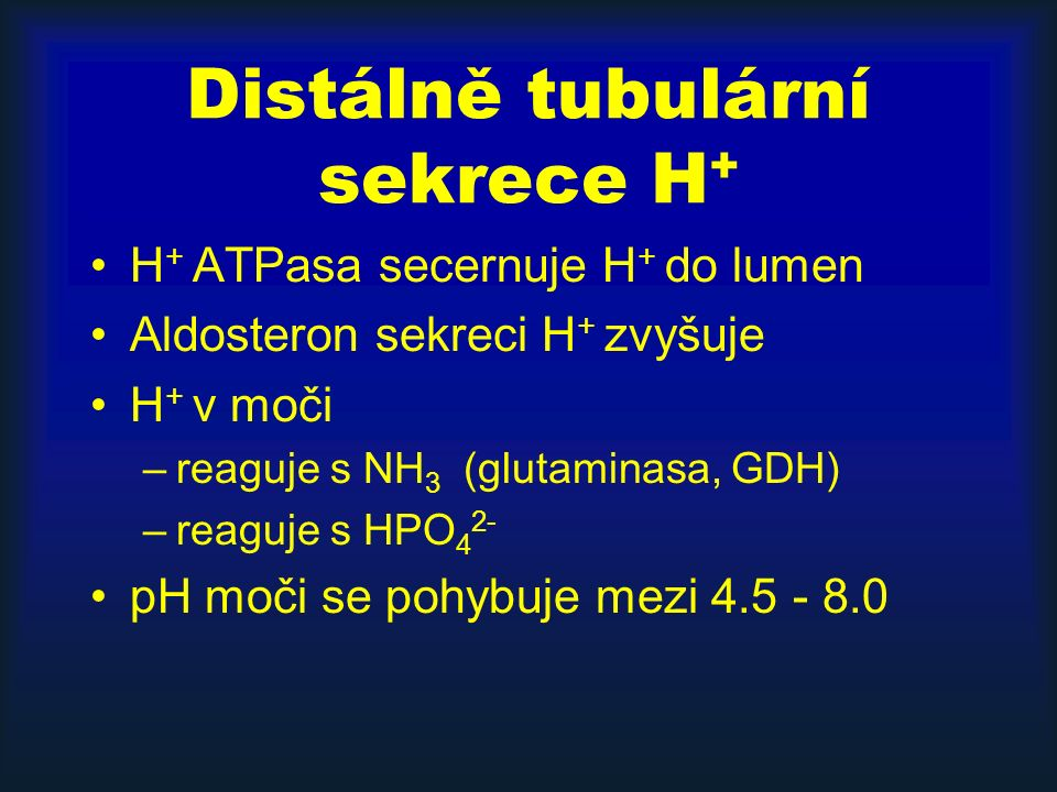 Distálně tubulární sekrece H + H + ATPasa secernuje H + do lumen Aldosteron sekreci H + zvyšuje H + v moči –reaguje s NH 3 (glutaminasa, GDH) –reaguje s HPO 4 2- pH moči se pohybuje mezi 4.5 - 8.0