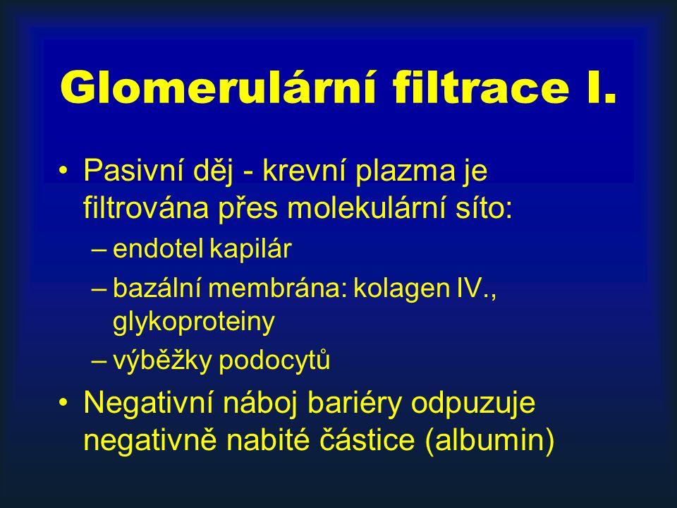 Glomerulární filtrace I.