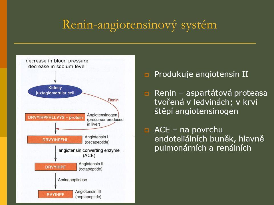 Renin-angiotensinový systém  Produkuje angiotensin II  Renin – aspartátová proteasa tvořená v ledvinách; v krvi štěpí angiotensinogen  ACE – na povrchu endoteliálních buněk, hlavně pulmonárních a renálních