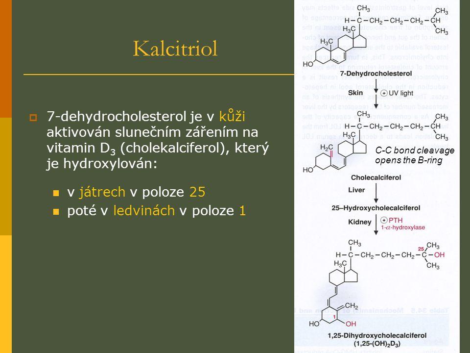 Kalcitriol  7-dehydrocholesterol je v kůži aktivován slunečním zářením na vitamin D 3 (cholekalciferol), který je hydroxylován: v játrech v poloze 25 poté v ledvinách v poloze 1 C-C bond cleavage opens the B-ring