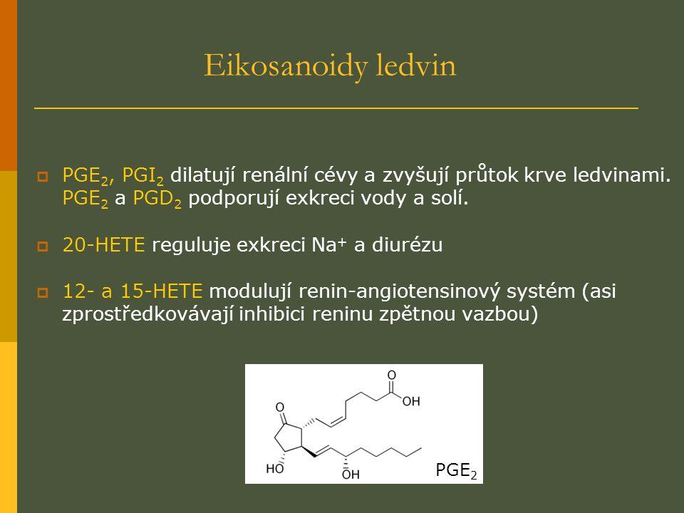 Eikosanoidy ledvin  PGE 2, PGI 2 dilatují renální cévy a zvyšují průtok krve ledvinami.