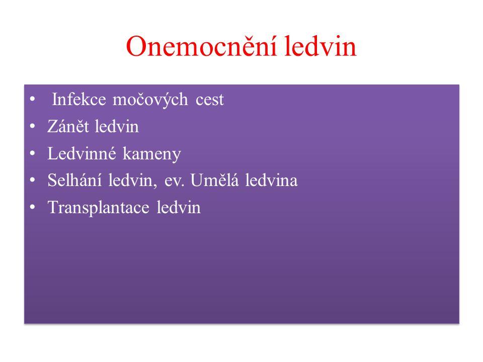 Onemocnění ledvin Infekce močových cest Zánět ledvin Ledvinné kameny Selhání ledvin, ev. Umělá ledvina Transplantace ledvin Infekce močových cest Záně