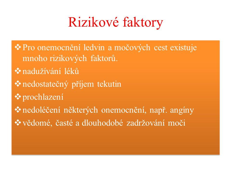 Rizikové faktory  Pro onemocnění ledvin a močových cest existuje mnoho rizikových faktorů.