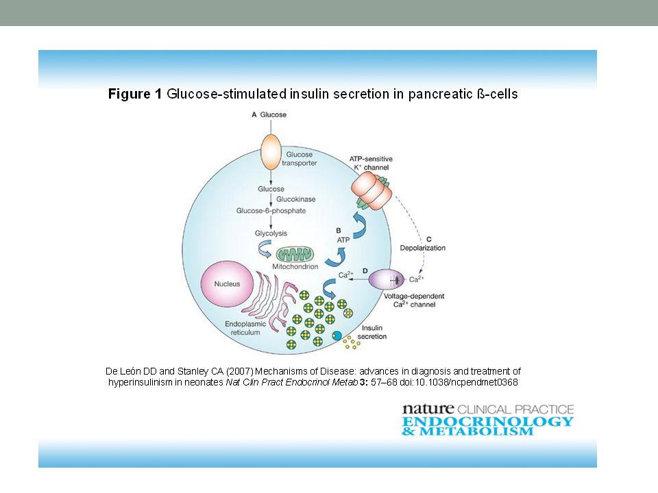 Pokles tyrosinkinasové aktivity inzulinového receptoru při gestačním DM.