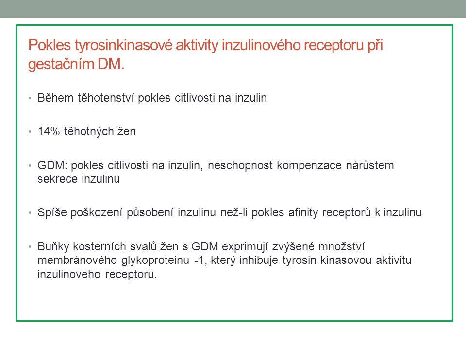 Pokles tyrosinkinasové aktivity inzulinového receptoru při gestačním DM. Během těhotenství pokles citlivosti na inzulin 14% těhotných žen GDM: pokles
