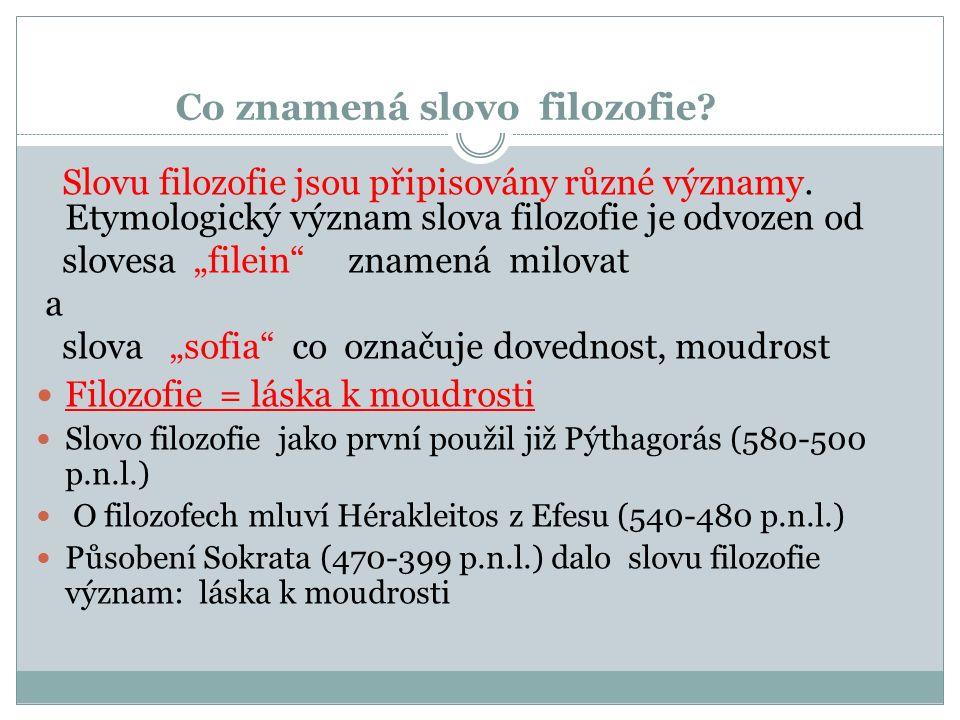 Problémy s pojmy: několik příkladů 1.Používání nejasných pojmů jako jsou např.