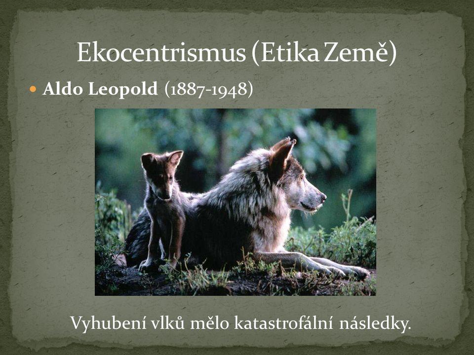 Vyhubení vlků mělo katastrofální následky.