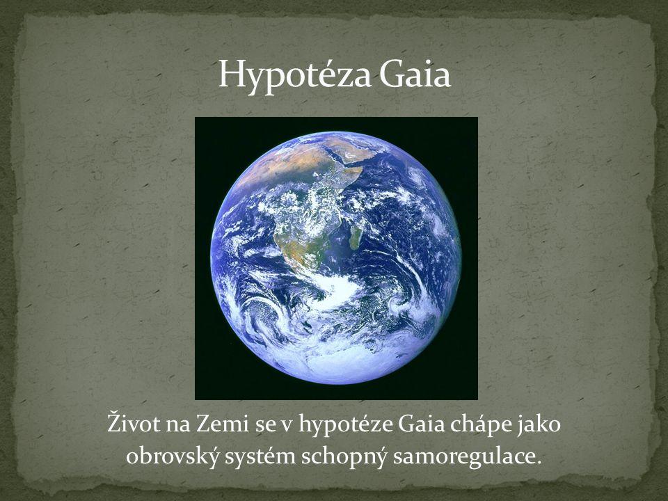 Život na Zemi se v hypotéze Gaia chápe jako obrovský systém schopný samoregulace.