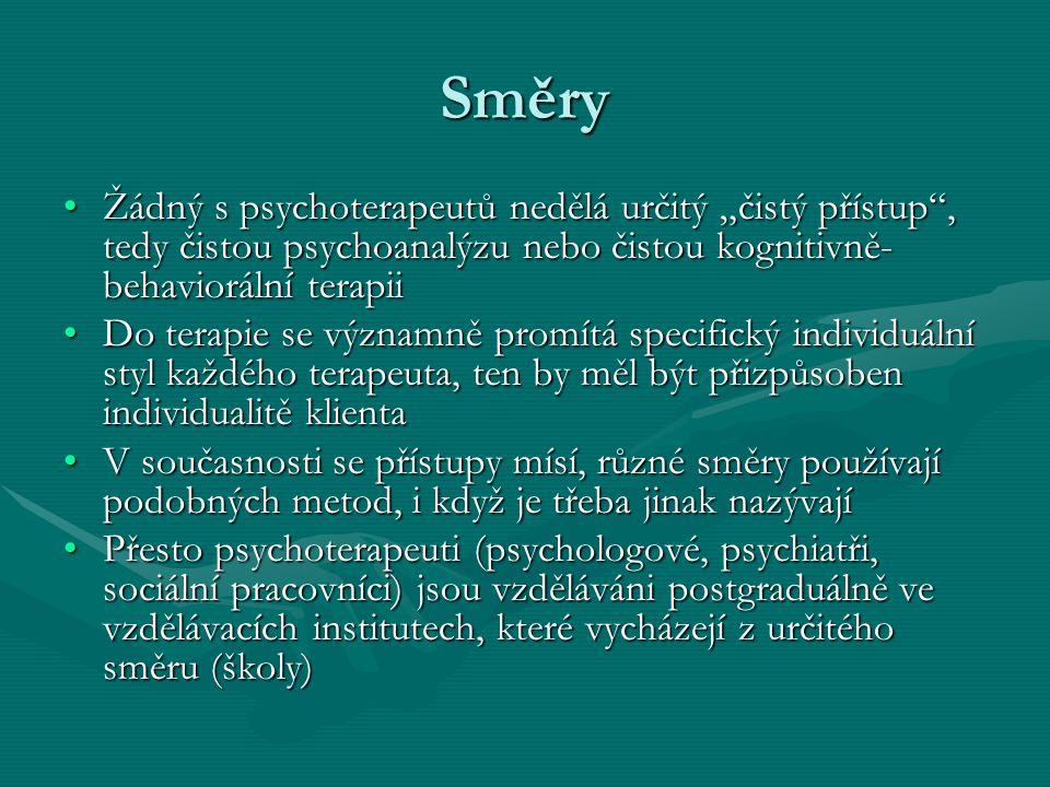 """Směry Žádný s psychoterapeutů nedělá určitý """"čistý přístup"""", tedy čistou psychoanalýzu nebo čistou kognitivně- behaviorální terapiiŽádný s psychoterap"""
