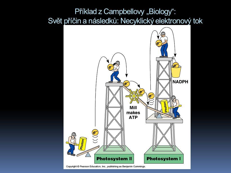 """Příklad z Campbellovy """"Biology"""": Svět příčin a následků: Necyklický elektronový tok"""