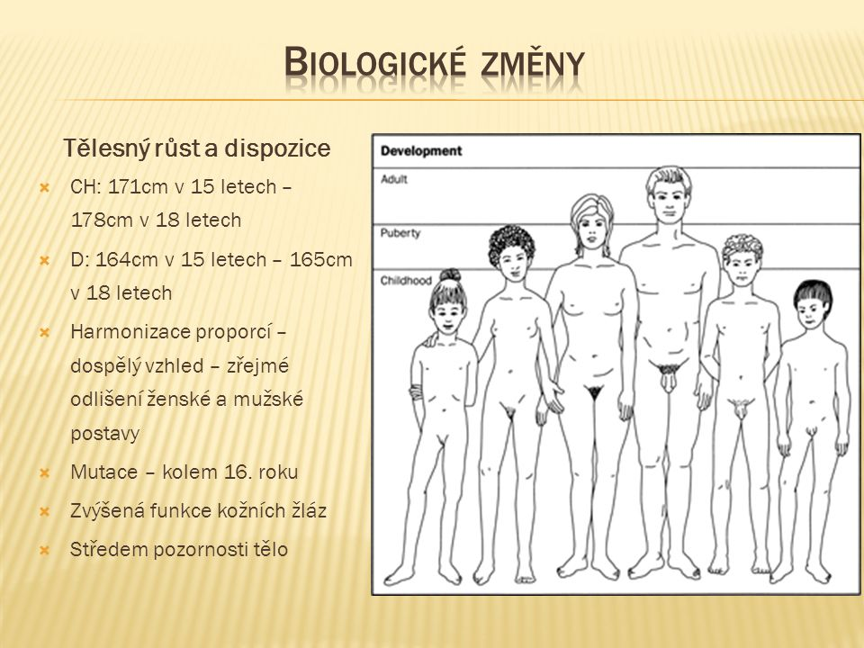 Tělesný růst a dispozice  CH: 171cm v 15 letech – 178cm v 18 letech  D: 164cm v 15 letech – 165cm v 18 letech  Harmonizace proporcí – dospělý vzhled – zřejmé odlišení ženské a mužské postavy  Mutace – kolem 16.