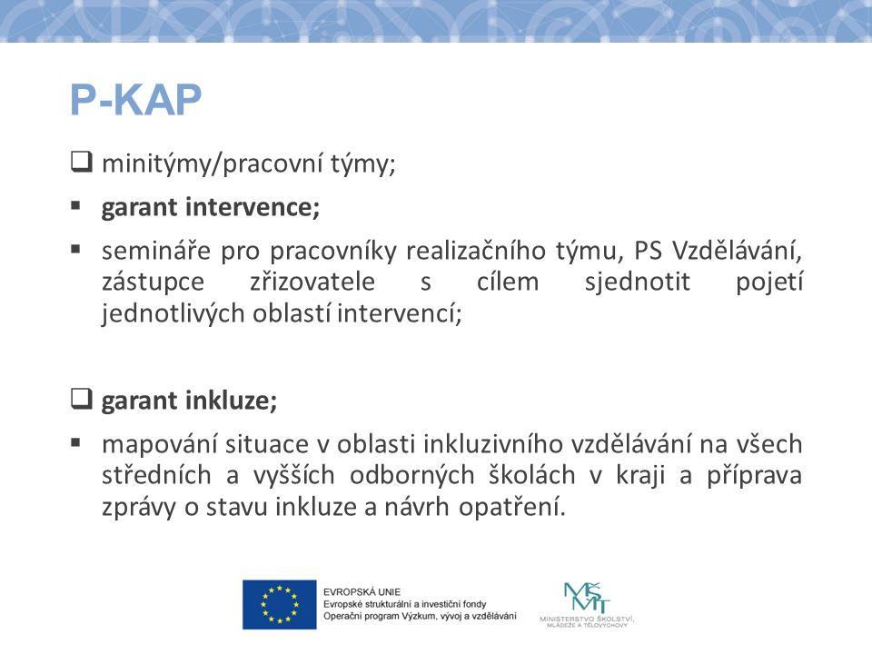 P-KAP  minitýmy/pracovní týmy;  garant intervence;  semináře pro pracovníky realizačního týmu, PS Vzdělávání, zástupce zřizovatele s cílem sjednoti