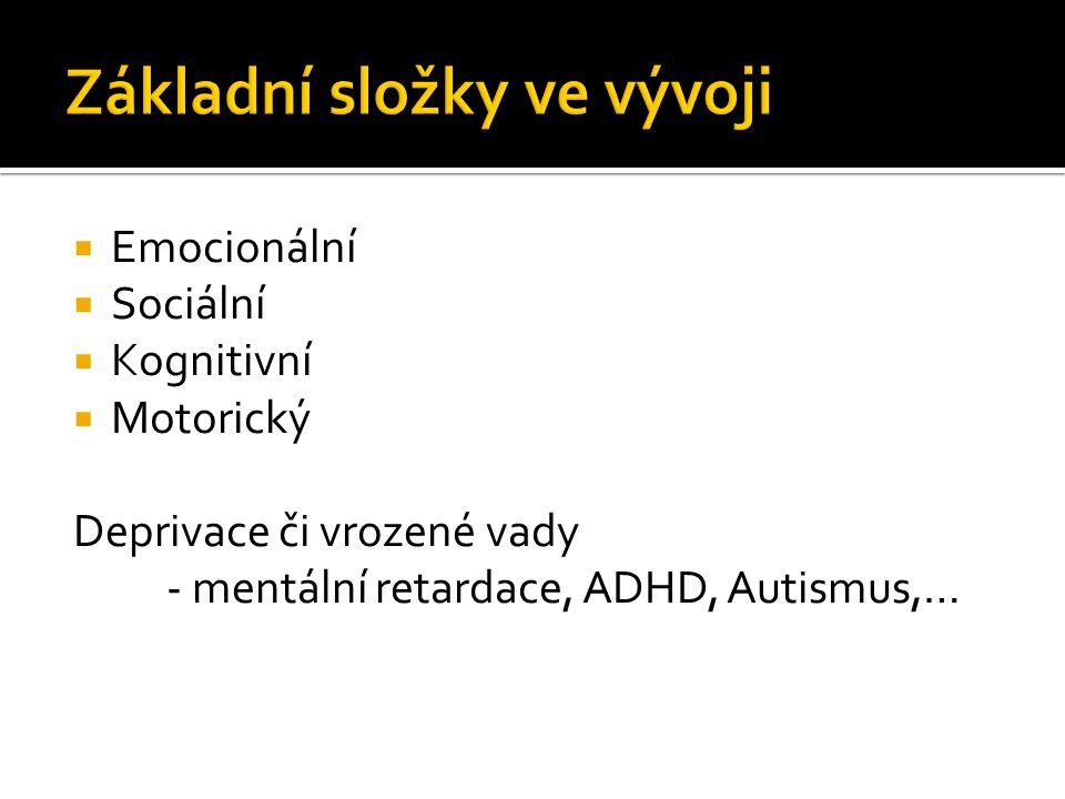  Emocionální  Sociální  Kognitivní  Motorický Deprivace či vrozené vady - mentální retardace, ADHD, Autismus,…