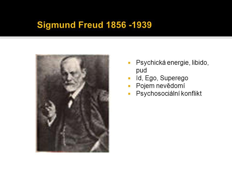  Psychická energie, libido, pud  Id, Ego, Superego  Pojem nevědomí  Psychosociální konflikt
