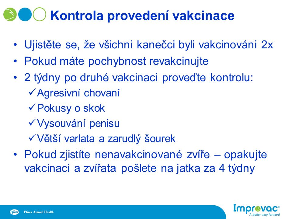 Kontrola provedení vakcinace Ujistěte se, že všichni kanečci byli vakcinováni 2x Pokud máte pochybnost revakcinujte 2 týdny po druhé vakcinaci proveďte kontrolu: Agresivní chovaní Pokusy o skok Vysouvání penisu Větší varlata a zarudlý šourek Pokud zjistíte nenavakcinované zvíře – opakujte vakcinaci a zvířata pošlete na jatka za 4 týdny