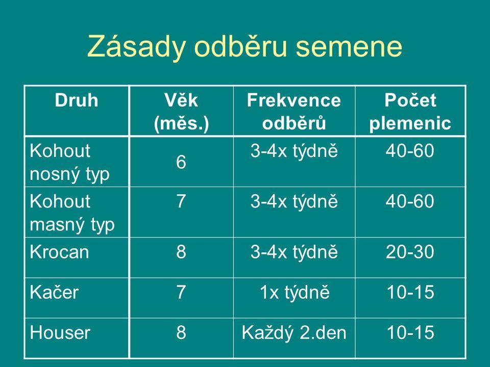 Zásady odběru semene DruhVěk (měs.) Frekvence odběrů Počet plemenic Kohout nosný typ 6 3-4x týdně40-60 Kohout masný typ 73-4x týdně40-60 Krocan83-4x t