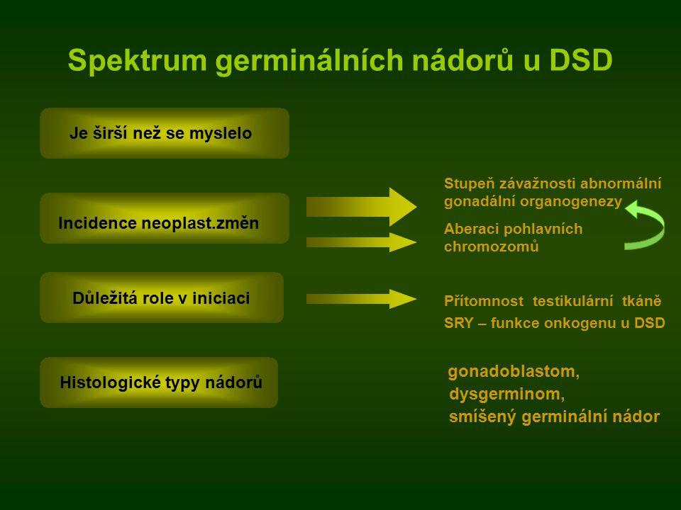 Spektrum germinálních nádorů u DSD gonadoblastom, dysgerminom, smíšený germinální nádor Důležitá role v iniciaci Je širší než se myslelo Incidence neoplast.změn Stupeň závažnosti abnormální gonadální organogenezy Aberaci pohlavních chromozomů Přítomnost testikulární tkáně SRY – funkce onkogenu u DSD Histologické typy nádorů