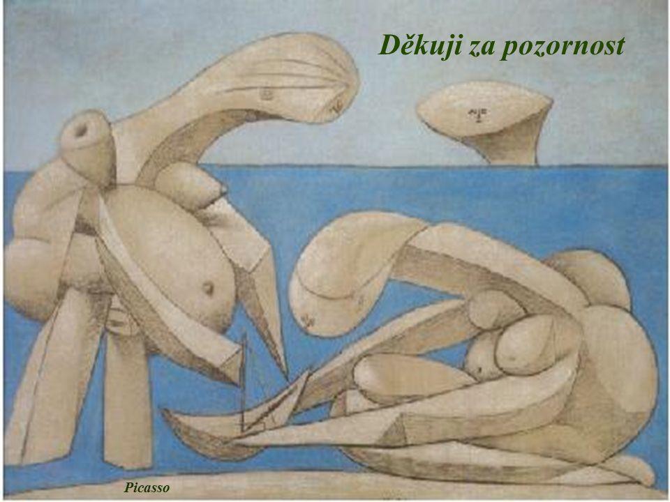 Děkuji za pozornost Picasso
