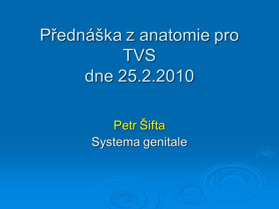 Přednáška z anatomie pro TVS dne 25.2.2010 Petr Šifta Systema genitale