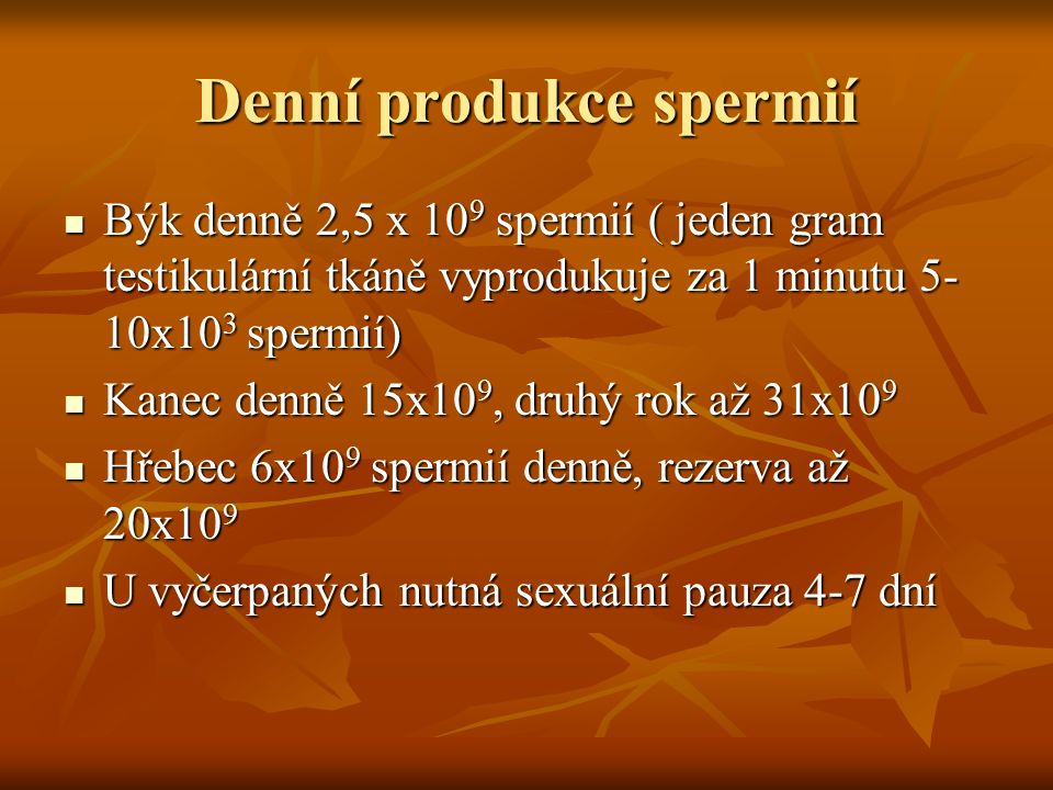 Denní produkce spermií Býk denně 2,5 x 10 9 spermií ( jeden gram testikulární tkáně vyprodukuje za 1 minutu 5- 10x10 3 spermií) Býk denně 2,5 x 10 9 s