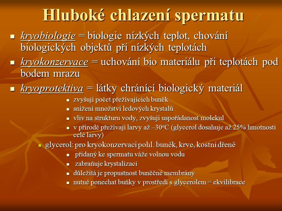 Hluboké chlazení spermatu kryobiologie = biologie nízkých teplot, chování biologických objektů při nízkých teplotách kryobiologie = biologie nízkých t