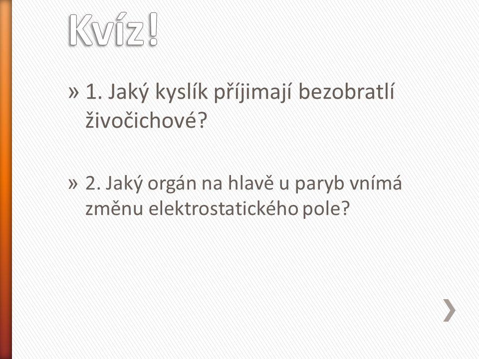 » 1. Jaký kyslík příjimají bezobratlí živočichové? » 2. Jaký orgán na hlavě u paryb vnímá změnu elektrostatického pole?