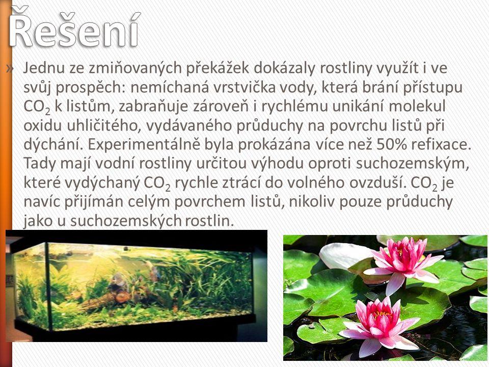 » Jednu ze zmiňovaných překážek dokázaly rostliny využít i ve svůj prospěch: nemíchaná vrstvička vody, která brání přístupu CO 2 k listům, zabraňuje z