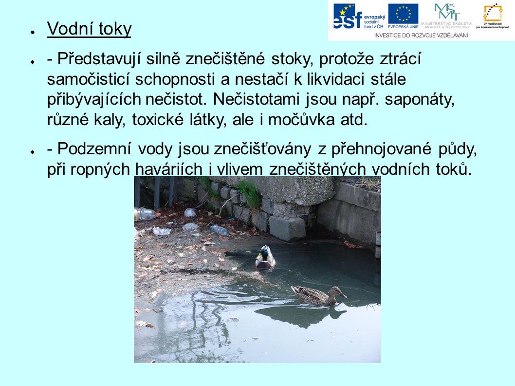 ● Vodní toky ● - Představují silně znečištěné stoky, protože ztrácí samočisticí schopnosti a nestačí k likvidaci stále přibývajících nečistot. Nečisto