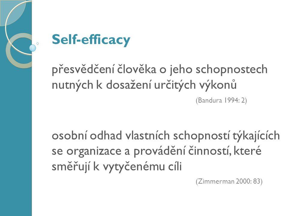 Faktorová analýza Úsilí Prožívání Sebe / Reflexe schopností