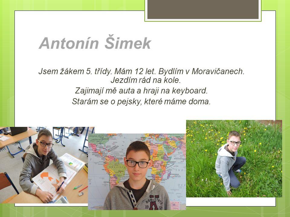 Jsem žákem 5. třídy. Mám 12 let. Bydlím v Moravičanech. Jezdím rád na kole. Zajimají mě auta a hraji na keyboard. Starám se o pejsky, které máme doma.