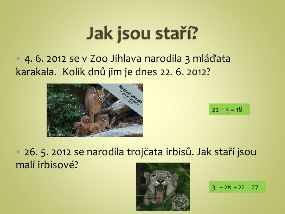 4.6. 2012 se v Zoo Jihlava narodila 3 mláďata karakala.