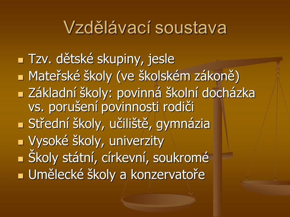 Vzdělávací soustava Tzv. dětské skupiny, jesle Tzv.