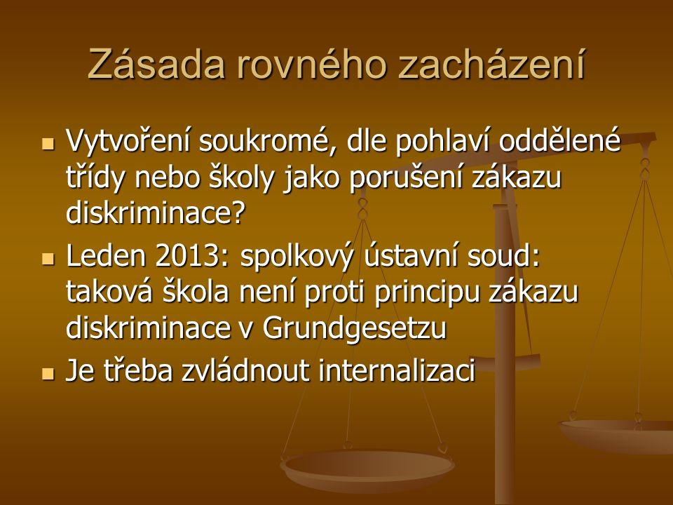 Vzdělávací soustava Tzv.dětské skupiny, jesle Tzv.