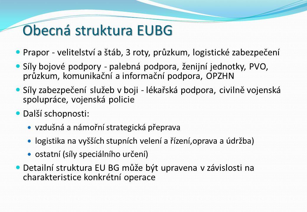 Obecná struktura EUBG Prapor - velitelství a štáb, 3 roty, průzkum, logistické zabezpečení Síly bojové podpory - palebná podpora, ženijní jednotky, PVO, průzkum, komunikační a informační podpora, OPZHN Síly zabezpečení služeb v boji - lékařská podpora, civilně vojenská spolupráce, vojenská policie Další schopnosti: vzdušná a námořní strategická přeprava logistika na vyšších stupních velení a řízení,oprava a údržba) ostatní (síly speciálního určení) Detailní struktura EU BG může být upravena v závislosti na charakteristice konkrétní operace