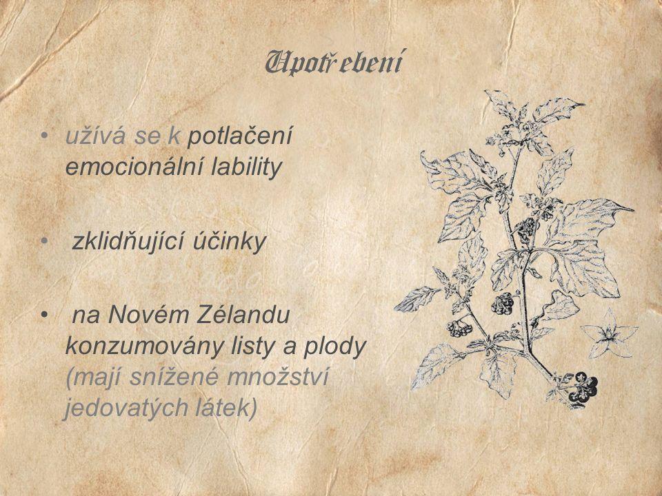 Upot ř ebení užívá se k potlačení emocionální lability zklidňující účinky na Novém Zélandu konzumovány listy a plody (mají snížené množství jedovatých látek)