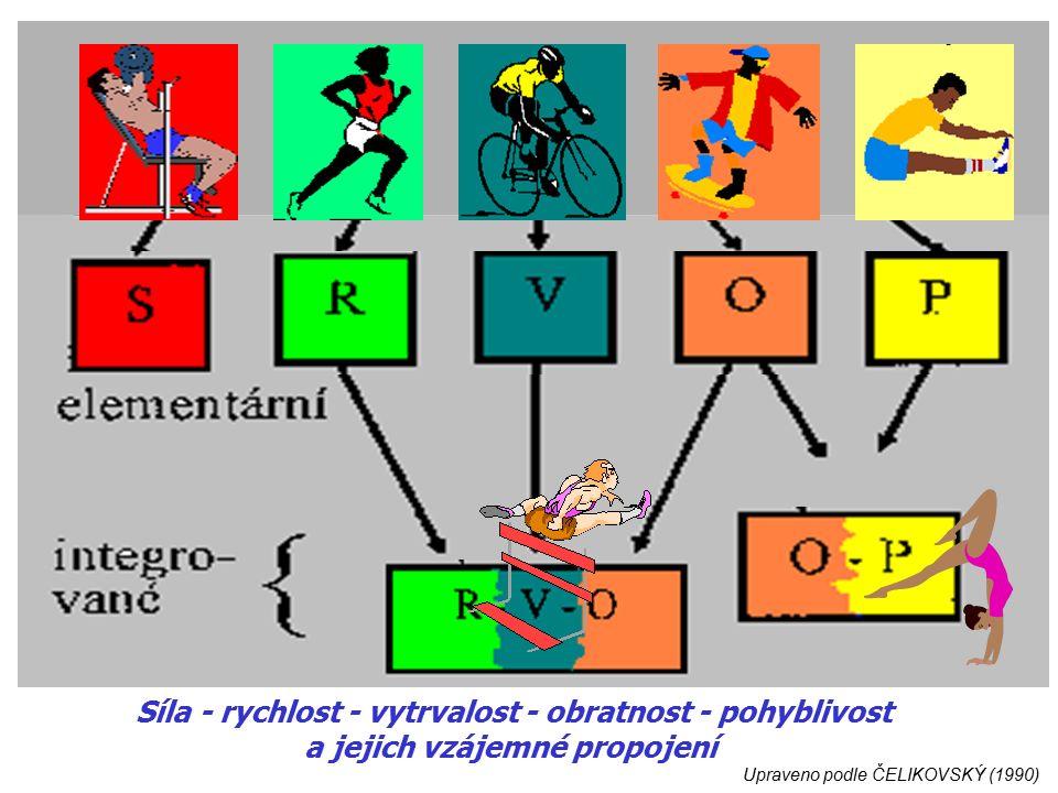 Upraveno podle ČELIKOVSKÝ (1990) Síla - rychlost - vytrvalost - obratnost - pohyblivost a jejich vzájemné propojení