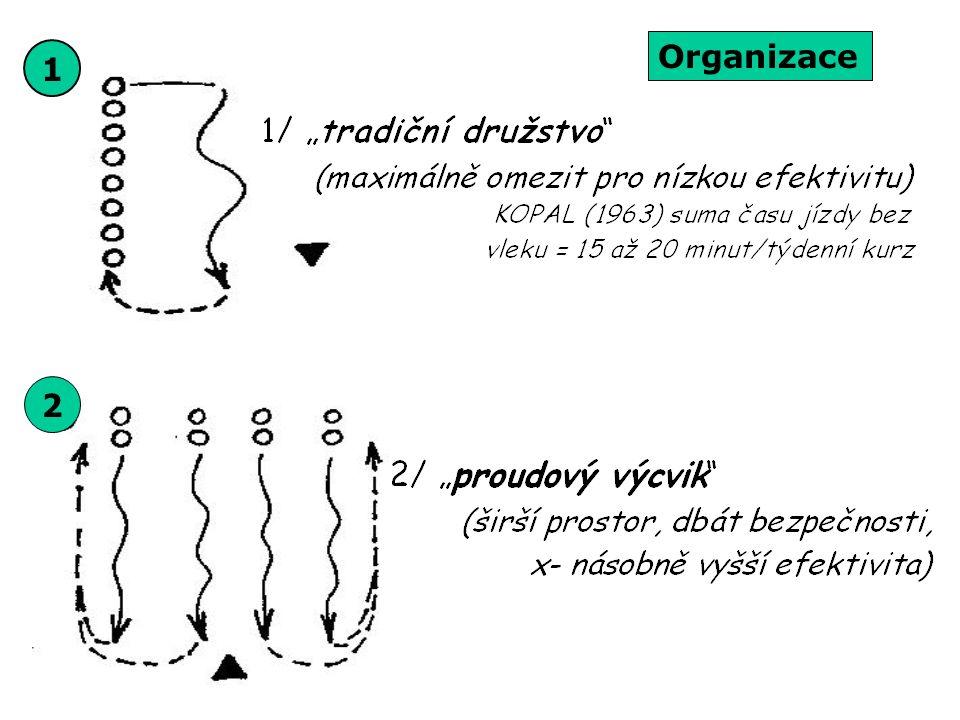 Organizace 1 2
