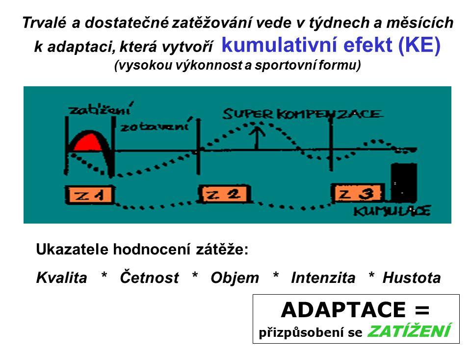 ADAPTACE = přizpůsobení se ZATÍŽENÍ Trvalé a dostatečné zatěžování vede v týdnech a měsících k adaptaci, která vytvoří kumulativní efekt (KE) (vysokou výkonnost a sportovní formu) Ukazatele hodnocení zátěže: Kvalita * Četnost * Objem * Intenzita * Hustota