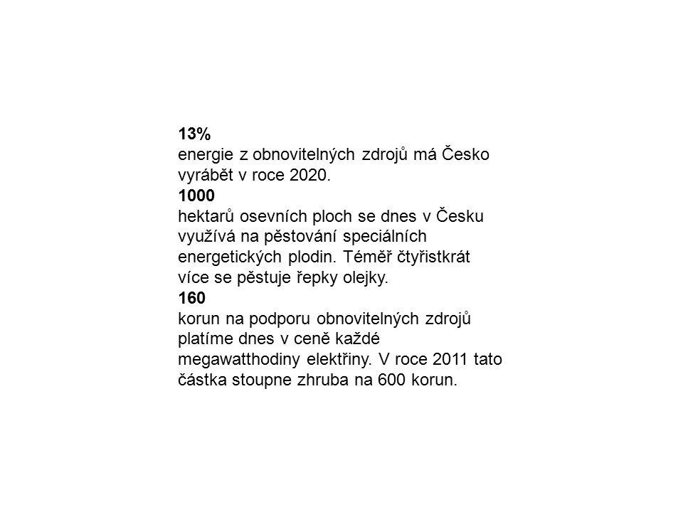 13% energie z obnovitelných zdrojů má Česko vyrábět v roce 2020. 1000 hektarů osevních ploch se dnes v Česku využívá na pěstování speciálních energeti