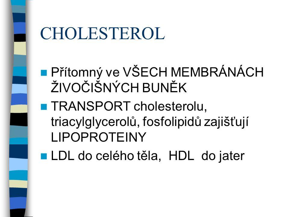 CHOLESTEROL Přítomný ve VŠECH MEMBRÁNÁCH ŽIVOČIŠNÝCH BUNĚK TRANSPORT cholesterolu, triacylglycerolů, fosfolipidů zajišťují LIPOPROTEINY LDL do celého těla, HDL do jater