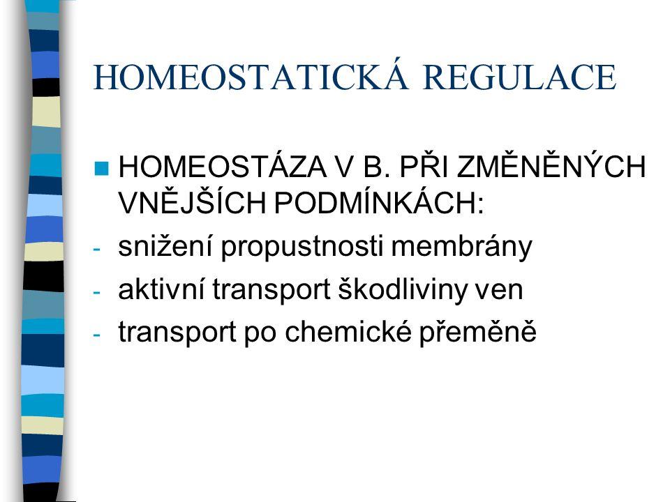 HOMEOSTATICKÁ REGULACE HOMEOSTÁZA V B.